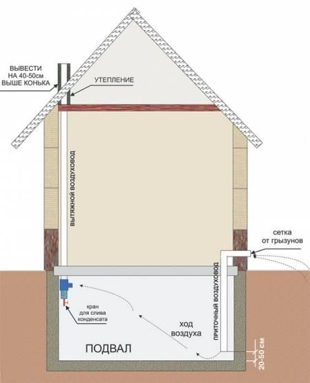 Вентиляция в подвале дома