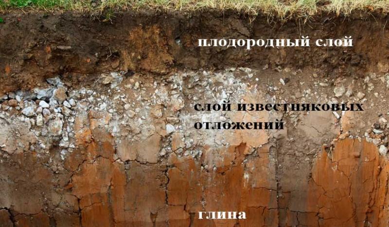 Глубина грунта и отличия в почве.