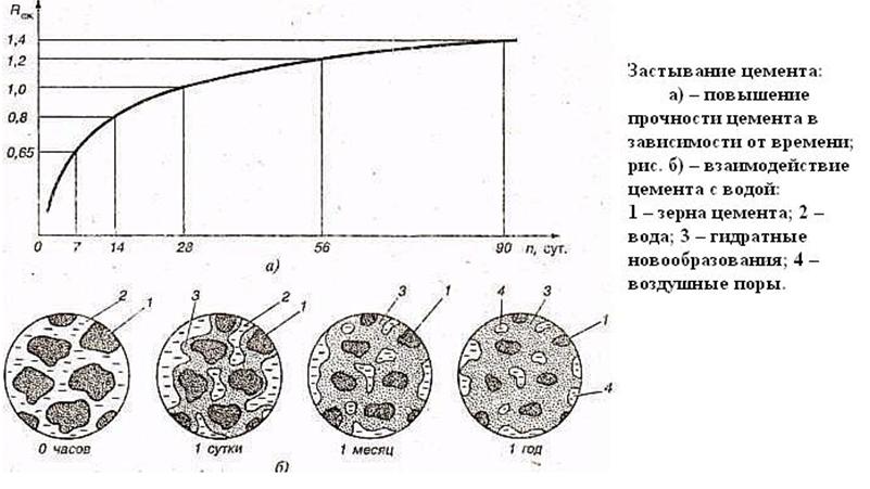 Течение процесса застывания цемента.